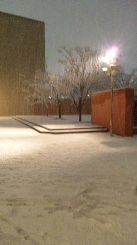 ウ゛ァレンタインと雪